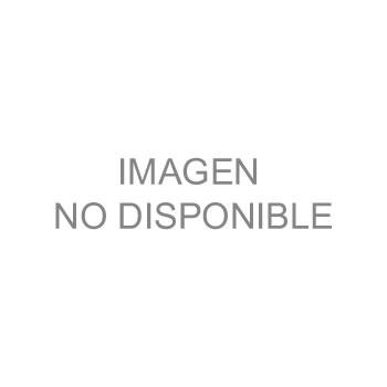 CURSO SOBRE SISTEMAS DE MEDIDAS DE ANTENAS EN CAMPO CERCANO EN EL LABORATORIO NACIONAL EN TELECOMUNCIACIONES Y ANTENAS (LaNTA) DEL IPN-TECHNOPOLI